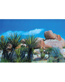 Trixie Pozadie obojstranné Púšť/Step 60x150 cm