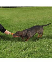 TRIXIE Dog Activity Fun-Mot hračka