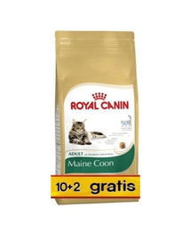 ROYAL CANIN Maine coon 10 kg + 2 kg gratis!