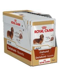ROYAL CANIN Jazvečík Adult 12x85g