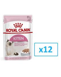 ROYAL CANIN Kitten 12x85g