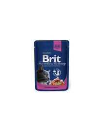 BRIT Premium Cat Adult with Salmon & Trout 100 g