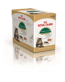 ROYAL CANIN Mainecoon 85 g vrecko 12x85 g