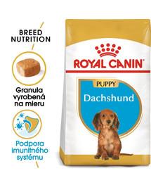 ROYAL CANIN Dachshund Puppy 1,5 kg granule pre šteňa jazvečíka