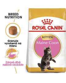 ROYAL CANIN Maine Coon Kitten 4kg granule pre mainské mývalie mačiatka