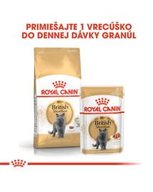 ROYAL CANIN British Shorthair Gravy 12x85g kapsička pre britské krátkosrsté mačky v šťave