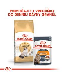 ROYAL CANIN Ragdoll Adult 10kg granule pre ragdoll mačky