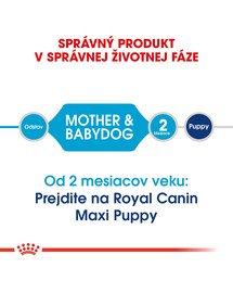 ROYAL CANIN Maxi Starter Mother & Babydog 15kg granule pre brezivé alebo dojčiace suky a šteňatá