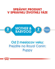 ROYAL CANIN Mini Starter Mousse konzerva pre brezivé alebo dojčace suky a šteňatá 195g