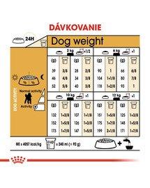 ROYAL CANIN Poodle Adult 1.5 kg granule pre dospelého pudla
