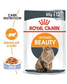 ROYAL CANIN Intense Beauty Gravy 85g kapsička pre mačky v šťave 12 x 85g