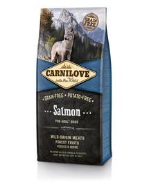 Carnilove Dog Salmon for Adult 12kg