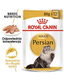 ROYAL CANIN Persian Adult 12x85 g mokré krmivo- paštika, pre dospelé perzské mačky