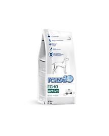 FORZA10 Oto/Echo Active Nutraceutická strava pre problémy s uchom 4 kg