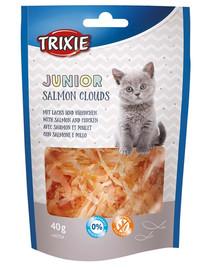 TRIXIE Junior Salmon Cloud 40g Maškrta pre mačky s lososom