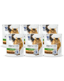 PERFECT FIT Cat 6x750 g Senior 7+