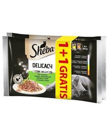 SHEBA Saszetka Delicacy Mäsové kapsičky v želé 56 x 85 g (28 +28 gratis)