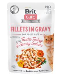 BRIT Care Cat Fillets in gravy 85 g