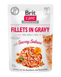 BRIT Care Cat Fillets in gravy savory Losos 85 g