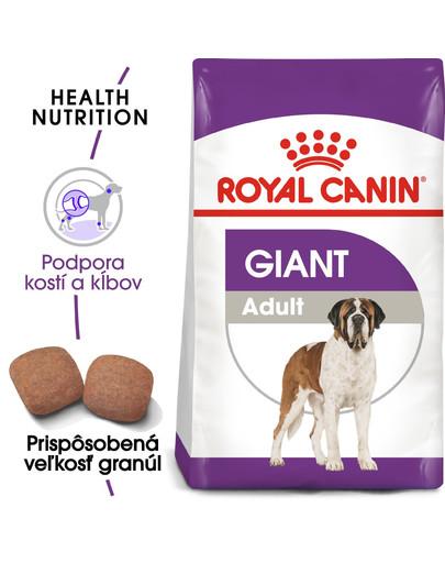 ROYAL CANIN Giant Adult 15kg granule pre dospelé obrie psy