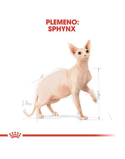ROYAL CANIN Sphynx Adult 10 kg granule pre sphynx mačky