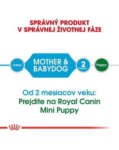 ROYAL CANIN Mini Starter Mother & Babydog 8,5 granule pre brezivé alebo dojčiace suky a šteňatá