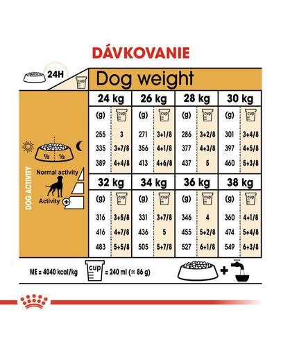 ROYAL CANIN Boxer Adult 12kg granule pre dospelého boxera