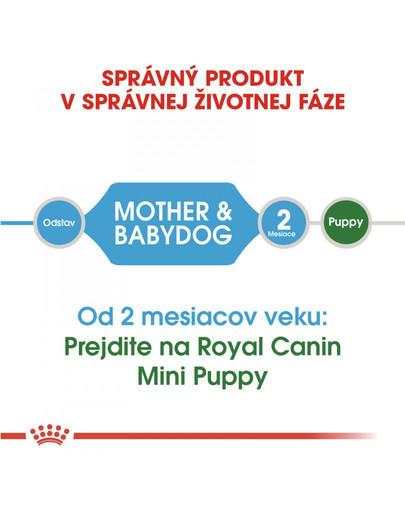 ROYAL CANIN Mini Starter Mother & Babydog 1kg granule pre brezivé alebo dojčiace suky a šteňatá